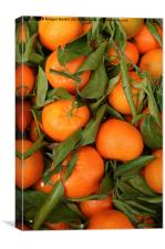 Clementines, Canvas Print