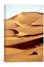 Sand Dune, Dubai, UAE, Canvas Print