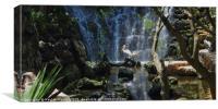 Pelicans & Waterfall, Canvas Print