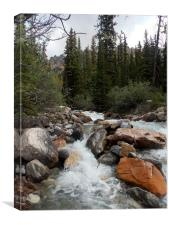 Rocky Mountains River Alberta Canada, Canvas Print