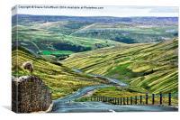 Buttertubs Pass, Canvas Print