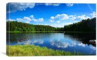 Small Moorland Lake, Canvas Print