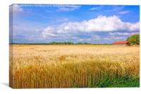 Summer Impressions from Northern Germany, Canvas Print