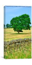 Countryside, Canvas Print