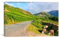 A Summer Evening in the Lake District, Canvas Print