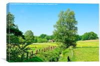 Early Summer Scenery, Canvas Print