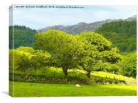 Welsh Scenery - Another Version, Canvas Print