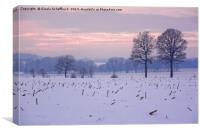 Winter Evening, Canvas Print