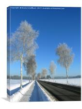 Hoar Frost, Canvas Print