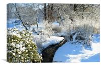Winter Garden, Canvas Print