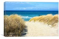 Path Through the Dunes to the Sea, Canvas Print