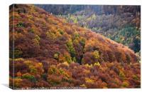 Beautiful Autumn Foliage in the Harz Mountains, Canvas Print