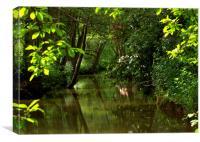 Tranquill River, Canvas Print