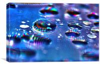 Droplets, Canvas Print