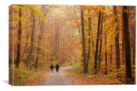 Forest in autumn Schoenbuch Germany, Canvas Print