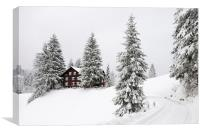 Trees and house in winter, Canvas Print