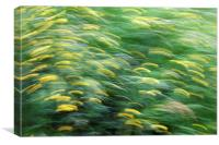 Abstract blurred flower meadow, Canvas Print