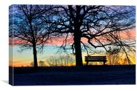 sunrise in the park, Canvas Print