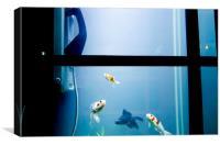 Phonebox Fish, Canvas Print