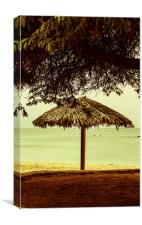 Parasol Paradise, Canvas Print