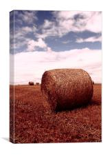 Straw Bale, Canvas Print