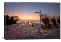 Dawn at Tealham Moor, Canvas Print