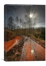 Red Mud, Canvas Print