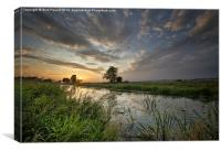 Sunset at Kings Sedgemoor Drain, Canvas Print