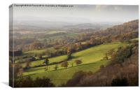 A View From Cothelstone Hill, Canvas Print