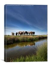 The Watchers on the Somerset Levels, Canvas Print
