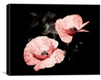 Vintage Poppies, Canvas Print