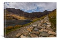 Pathway to Snowdon , Canvas Print