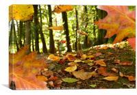 Autumn leaves, Canvas Print