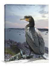 cormorant over harbour, Canvas Print