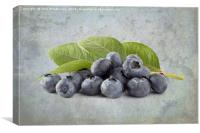 Blueberries, Canvas Print