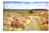 Cannock Chase, Canvas Print