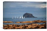 Yachts at Bass Rock, Canvas Print