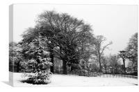 Winter at Cusworth, Canvas Print