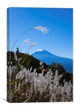 Mount Fuji, Canvas Print