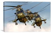 Westland Sea King HC.4 Helicopters , Canvas Print