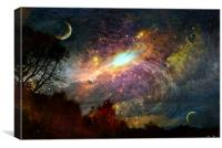 The Universe , Canvas Print