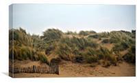 Golden Camber Sands , Canvas Print