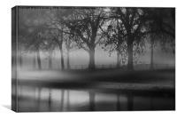 Fog at dusk, Canvas Print