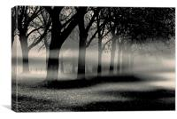 Mist and Mystery , Canvas Print