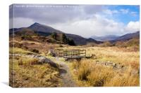 Country Path in Snowdonia, Canvas Print