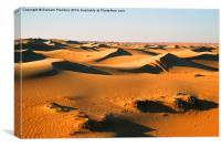 Sand Dunes In Evening Light, Canvas Print