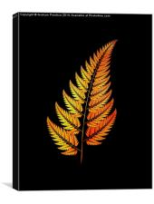 Golden Fern, Canvas Print