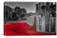 Cascading Poppies, Tower of London, Canvas Print