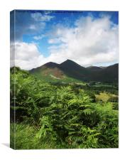 Causey Pike From Catbells, Canvas Print