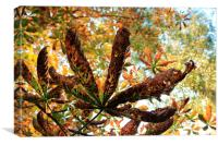 Time to fall yet, Canvas Print